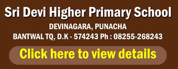 Sridevi-higher